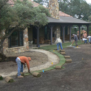 Sonoma Mountain Landscape Design Services
